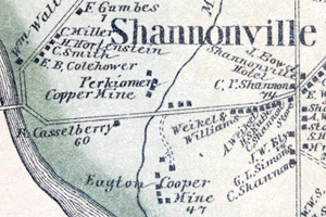 1877 map of Shannonville (Audubon, PA)